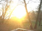 Lookit Beautiful morning