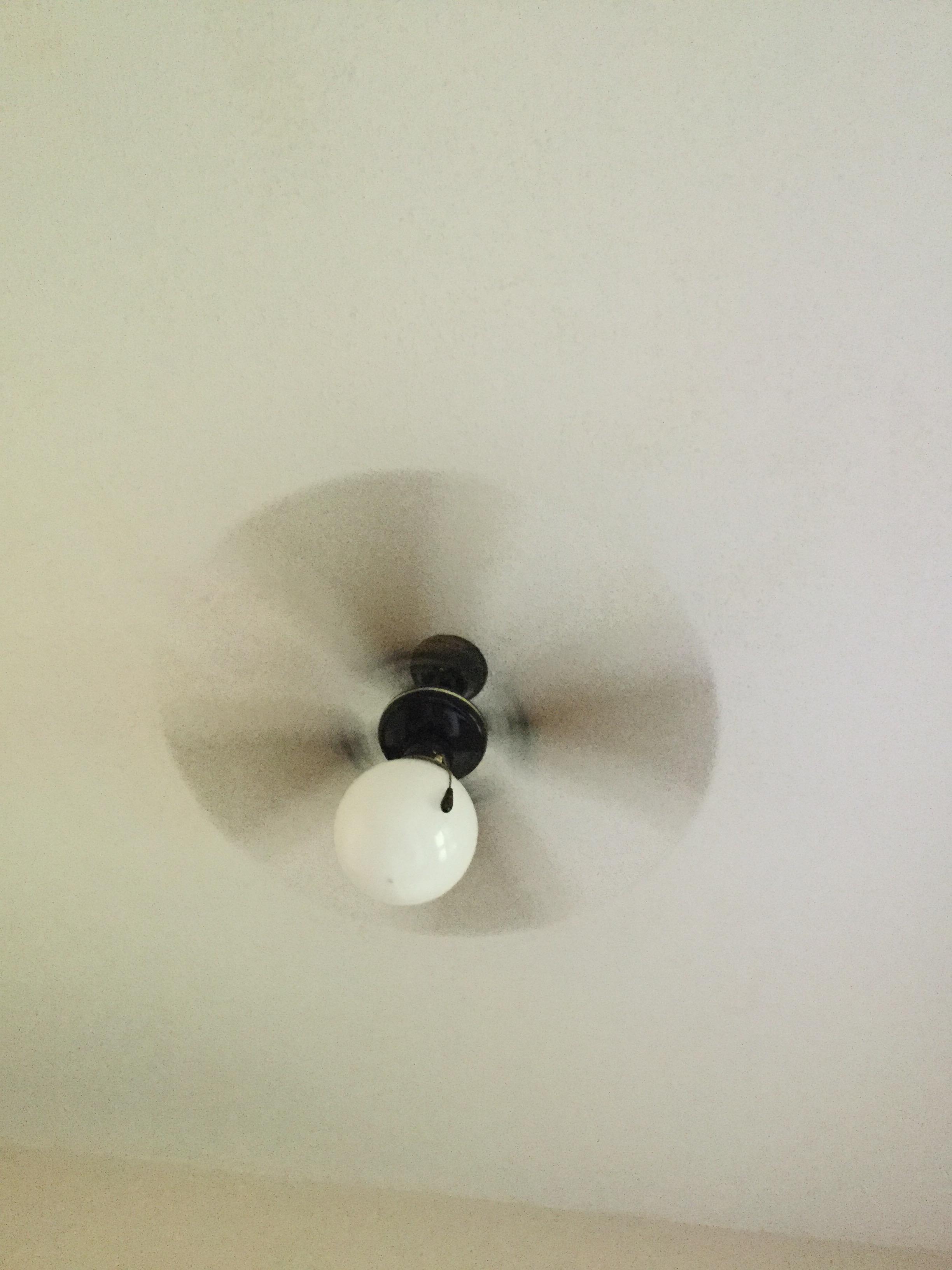 Lookit My Fan