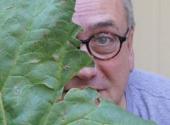 Lookit Rhubarb